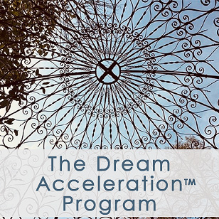 The Dream Acceleration Program